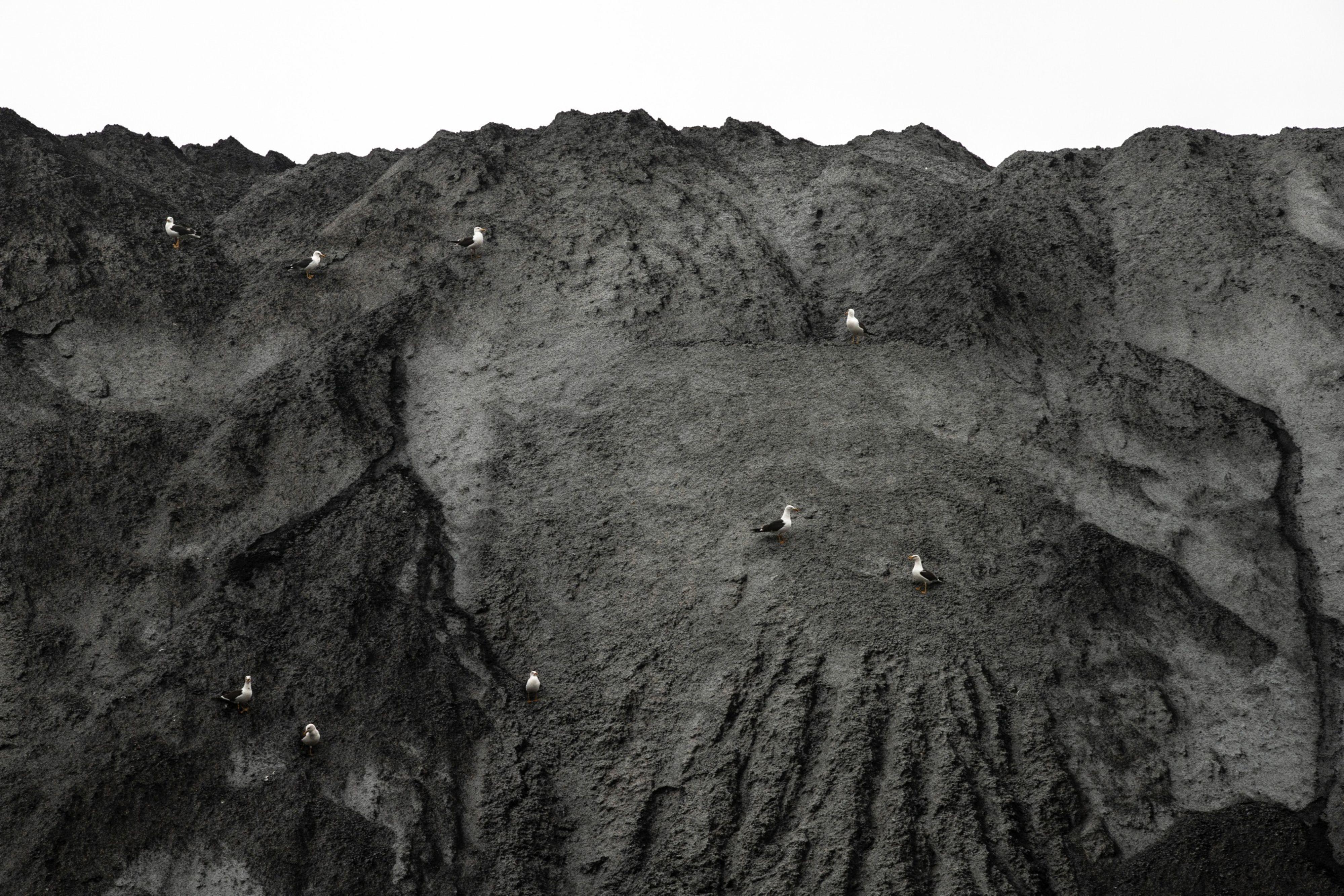 Carbón apilado en la planta Onyx Power en el Puerto de Roterdam en Roterdam, Holanda, el martes 13 de julio, 2021.